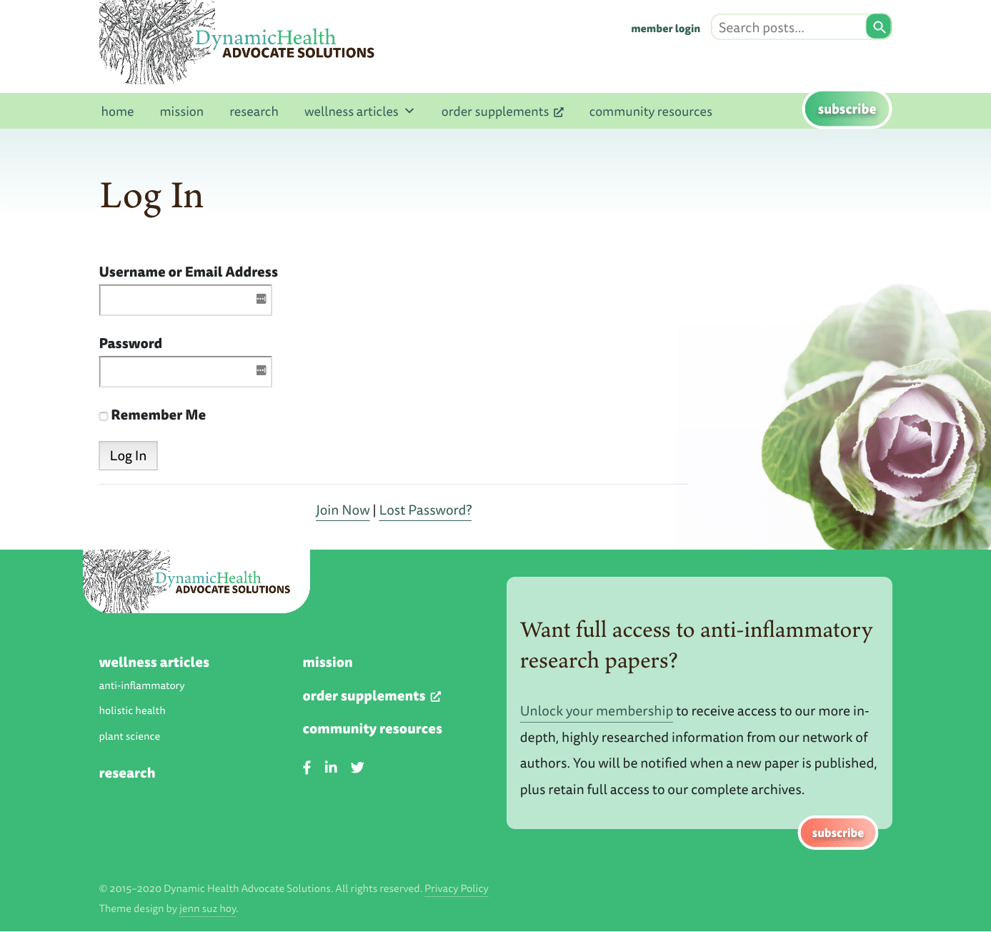 Screenshot of the Custom Login page for Dynamic Health Advocate Solutions